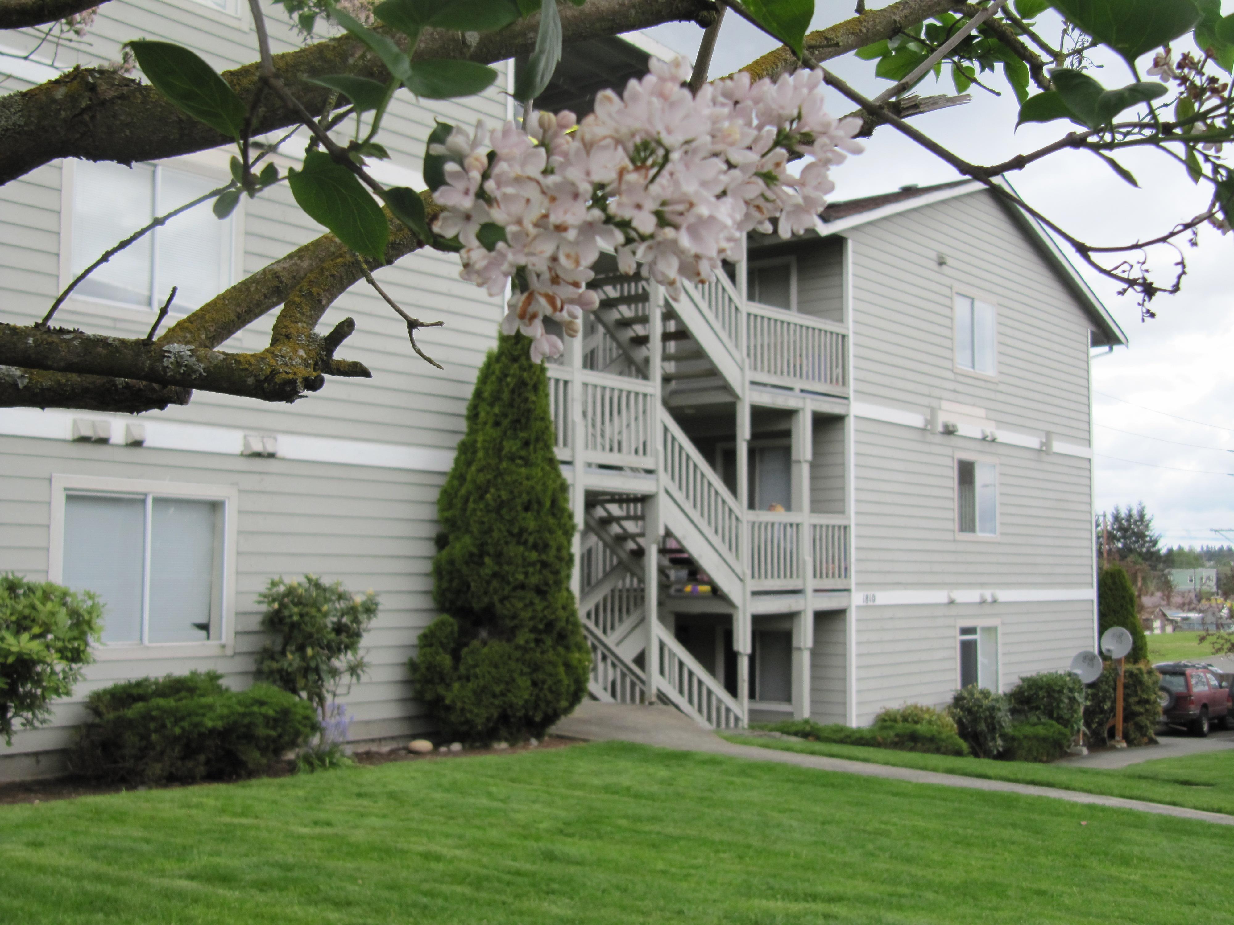 Studio Apartment Everett Wa north everett apartments/williams investments 3015 95th st everett